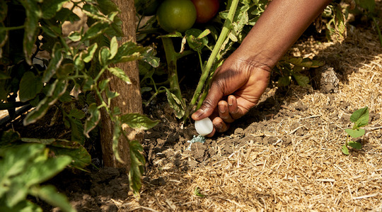 gardening supplies singapore