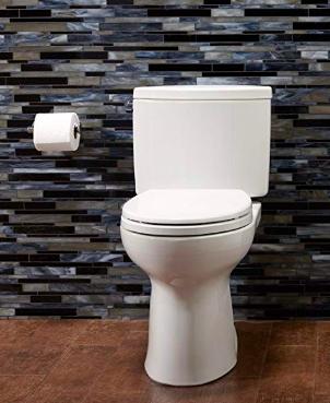 The Toto Toilet